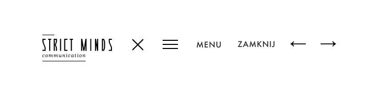 Projekt ikon podstawowych wraz z alternacją logo
